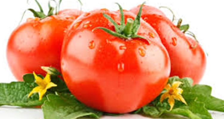 https://cuisine.nessma.tv/فوائد لا تعدّ توفرها مادة  الطماطم
