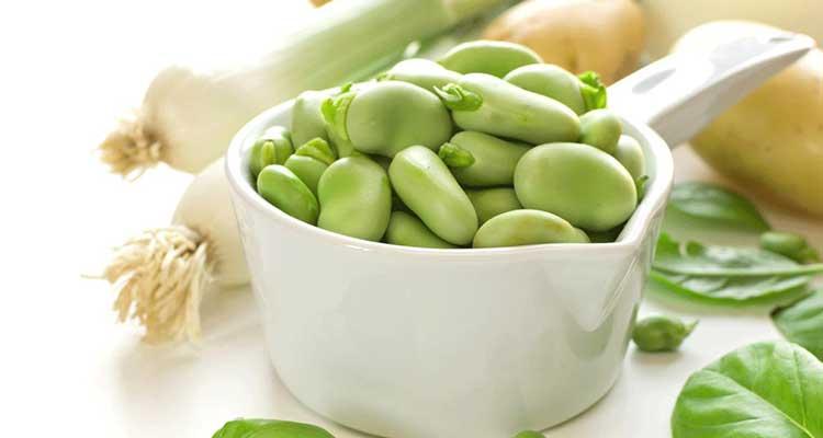 فوائد الفول الأخضر لمرضى السكري وتخفيض الوزن