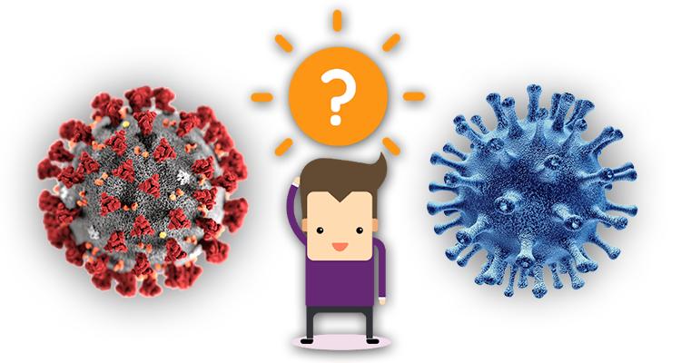 https://cuisine.nessma.tv/هكذا نفرّق بين فيروس كورونا المستجد والإنفلونزا العادية !