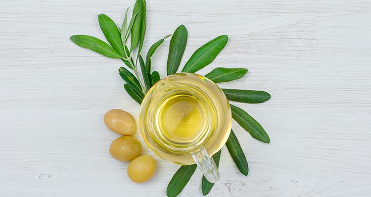 وصفات بأوراق الزيتون تمنحك جسم صحي