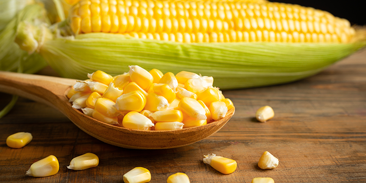 https://cuisine.nessma.tv/طريقة تصبير الذرة في المنزل