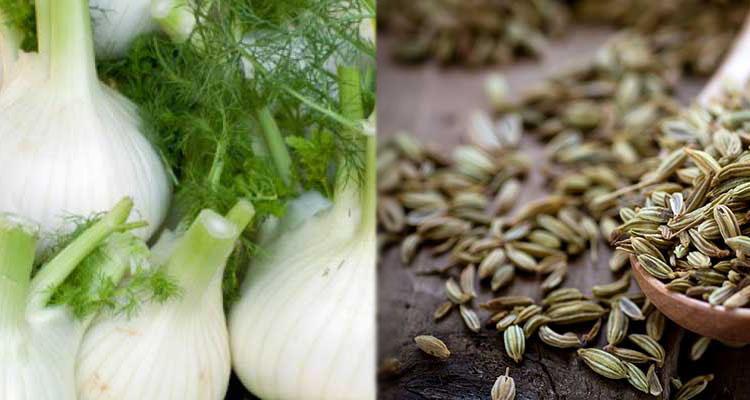 البسباس: نبتة غنية بالمعادن والفيتامينات وحمية غذائية للجسم في 7  نقاط