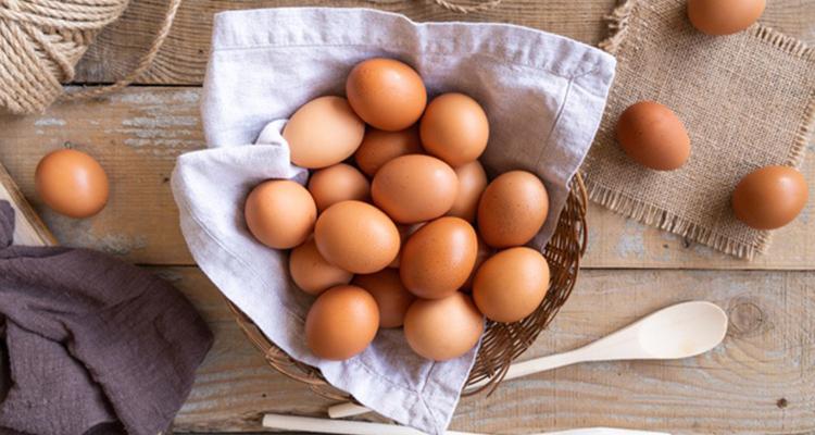 البيض بديل نافع للنباتيين؟
