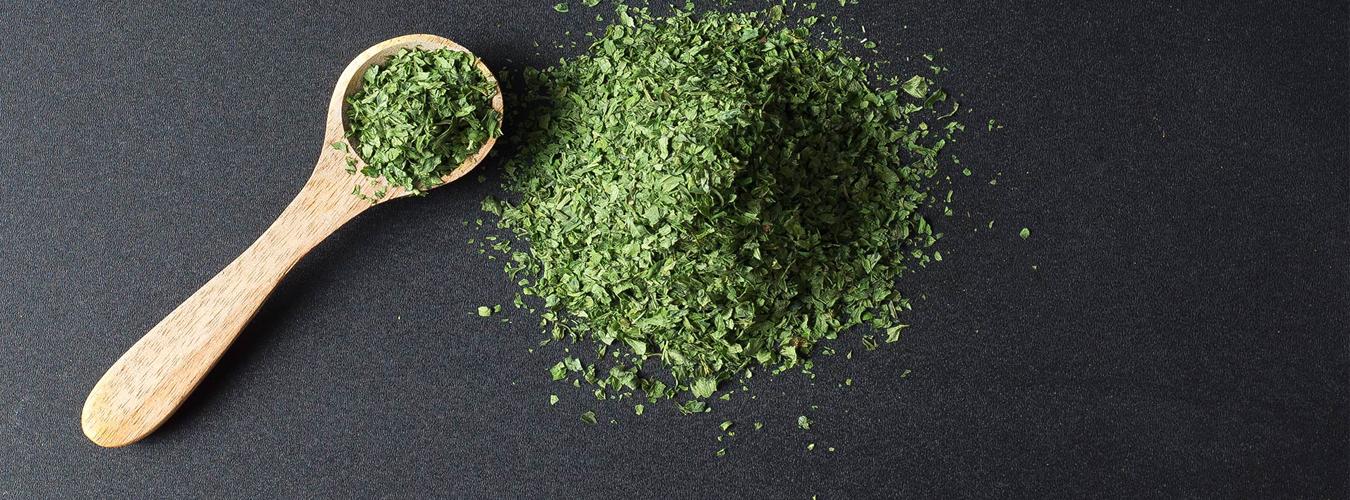 Comment conserver les herbes aromatiques : persil, coriandre ?