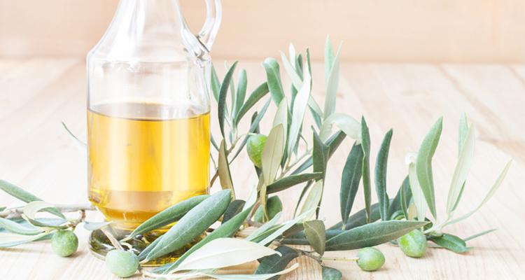 https://cuisine.nessma.tv/Les feuilles d'olivier le meilleur allié de notre immunité