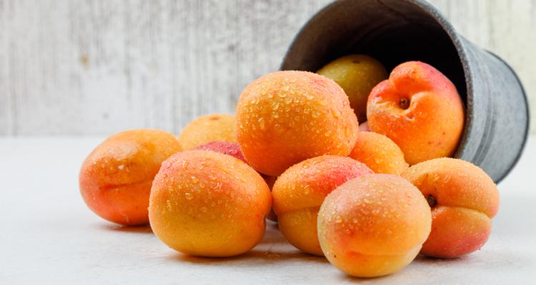 https://cuisine.nessma.tv/Idées de recettes : Que faire avec des abricots ?